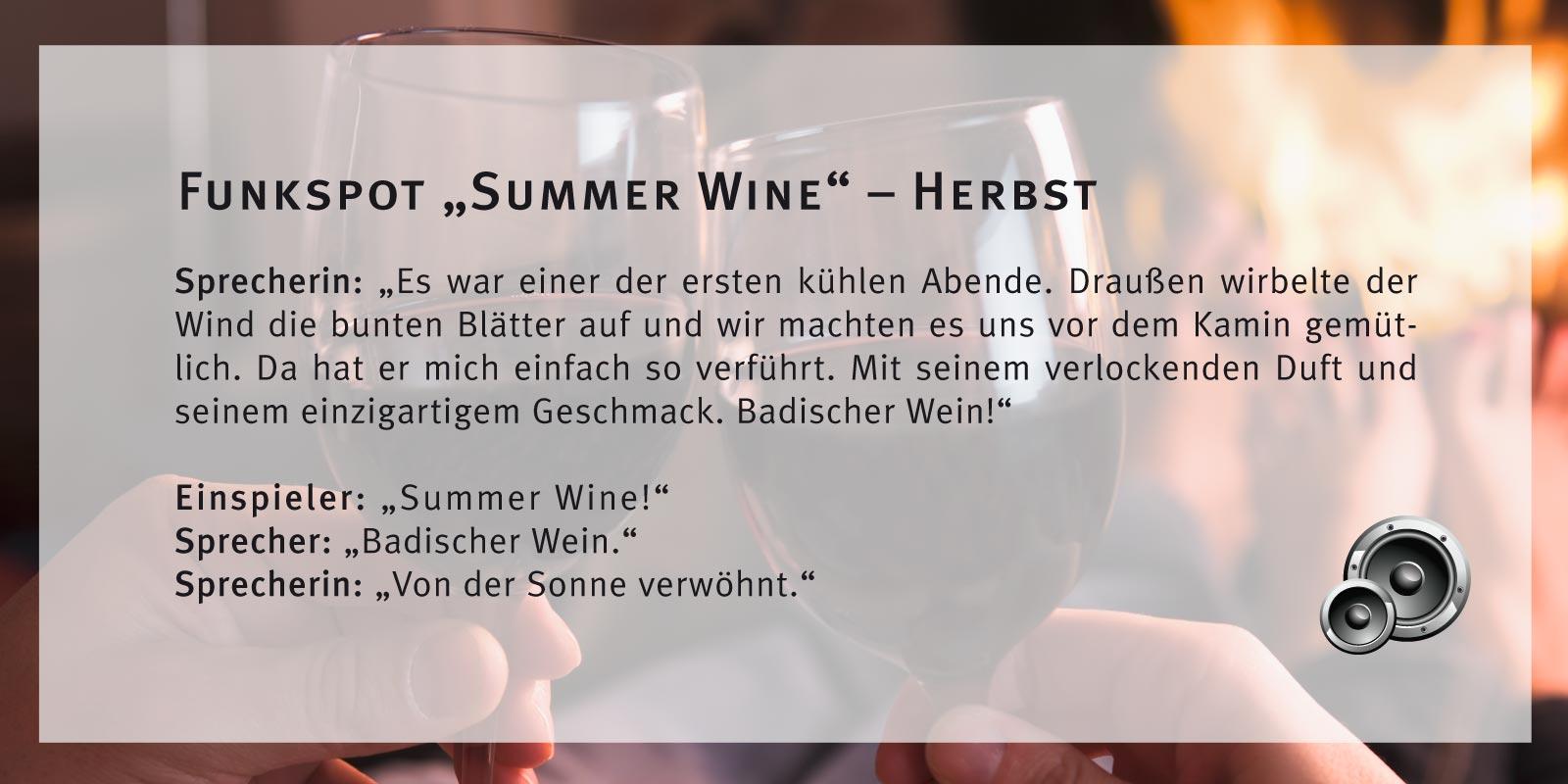 Badischer Wein – Funkspot Herbst